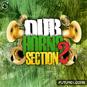 Dub Horns Section 2