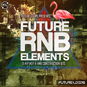 Future RNB Elements