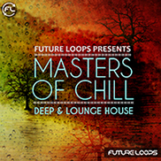 Masters Of Chill - Deep & Lounge House
