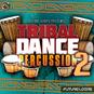 Tribal Dance Percussion 2