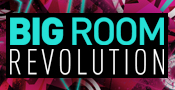Big Room Revolution