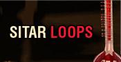 Sitar Loops