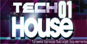 Tech House 01