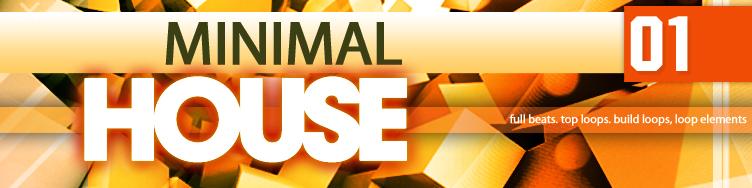 Minimal House 01