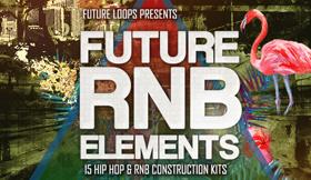 Future RNB Elements