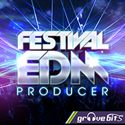 Festival EDM Producer